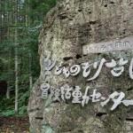 冒険活動センター・こどものもり公園