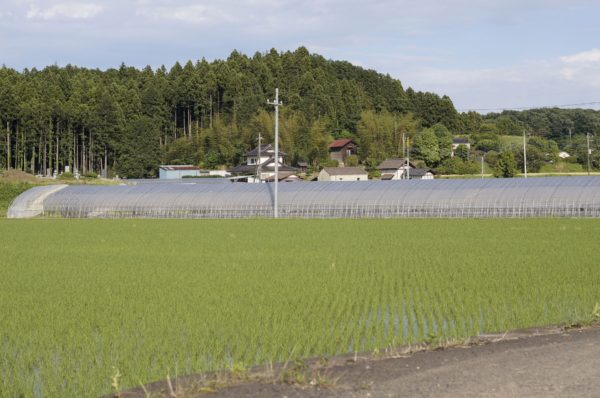 佐久山の風景