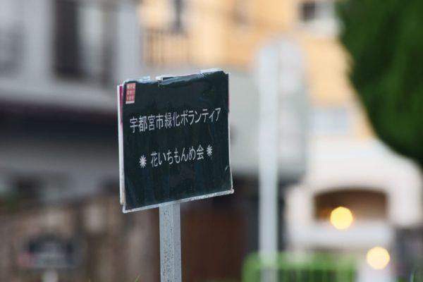 絞りF8位